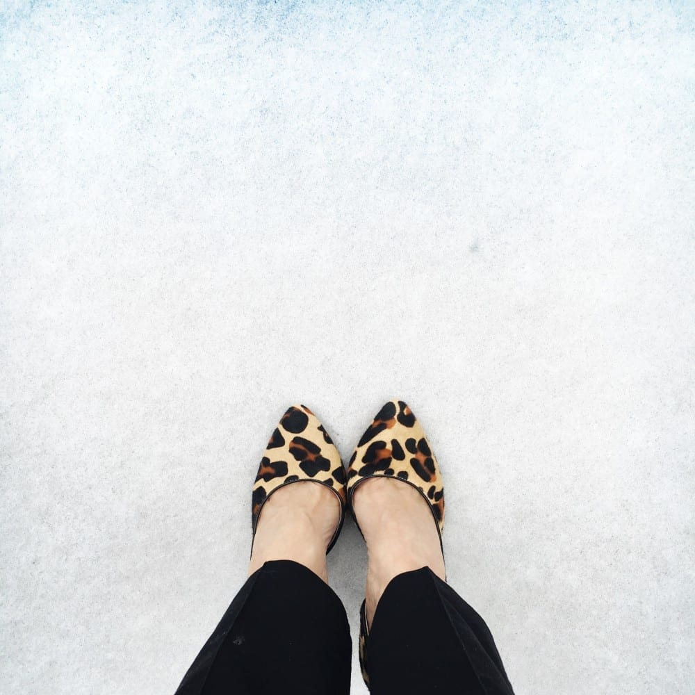 leopard pumps on allweareblog.com