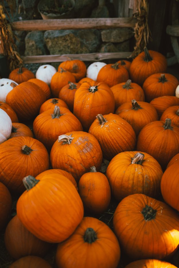 our fall bucket list on allweareblog.com