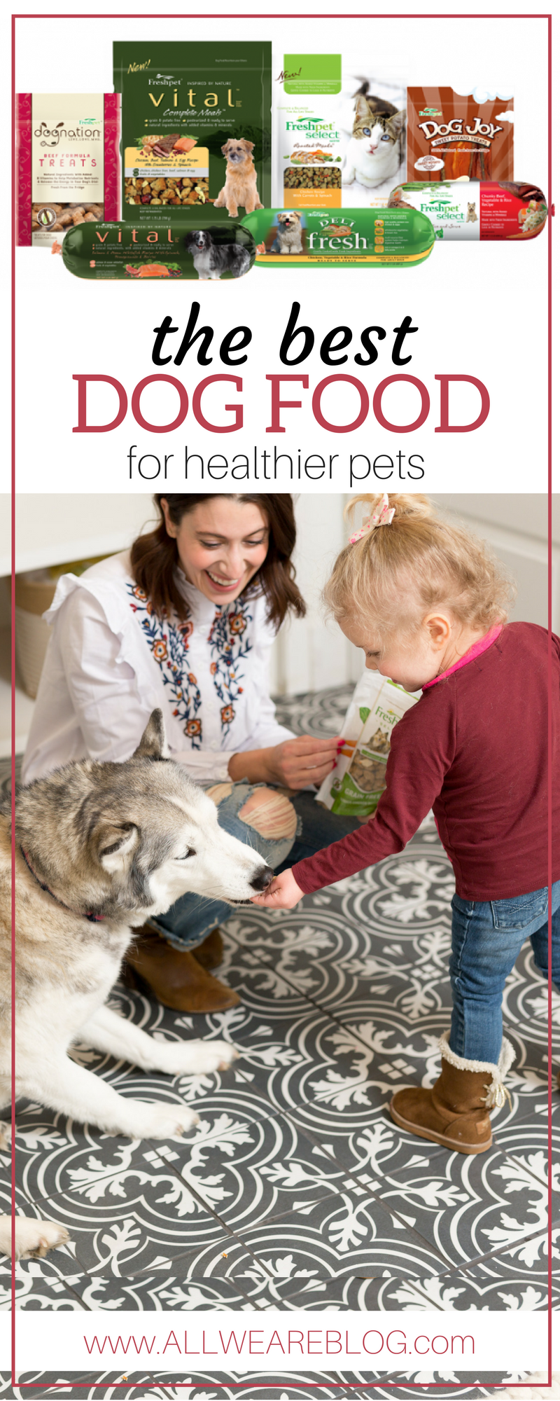 the best dog food for healthier pets